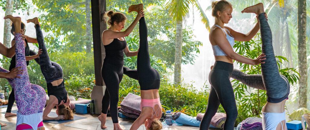 choosing a 200 Hour Yoga Teacher Training